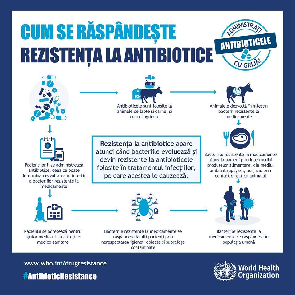 Multirezistenta: Bacterii si antibiotice - Farmacia Alphega